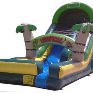 Tropical Water Slide 18'H